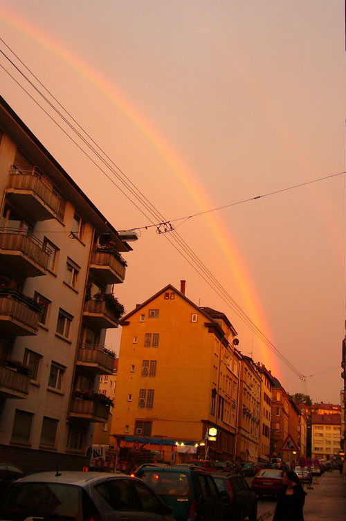 I love my rainbow barrio…