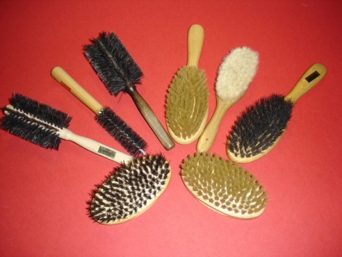 Fünf Haarbürsten