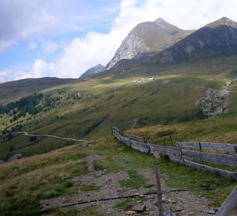 Cordon Bleu im Alpenrausch