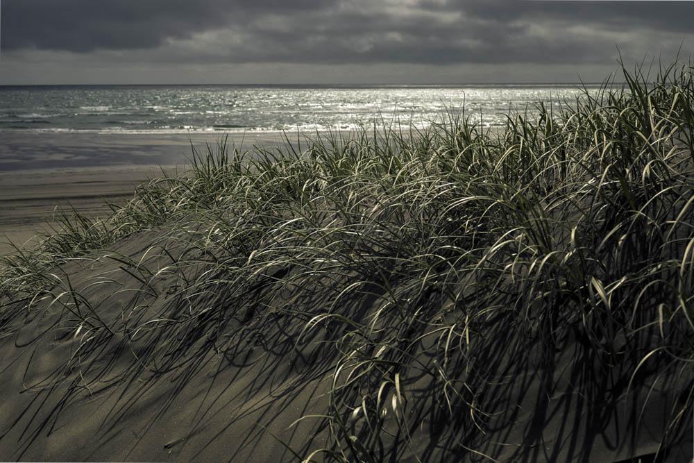 Himatangi-beach-strong
