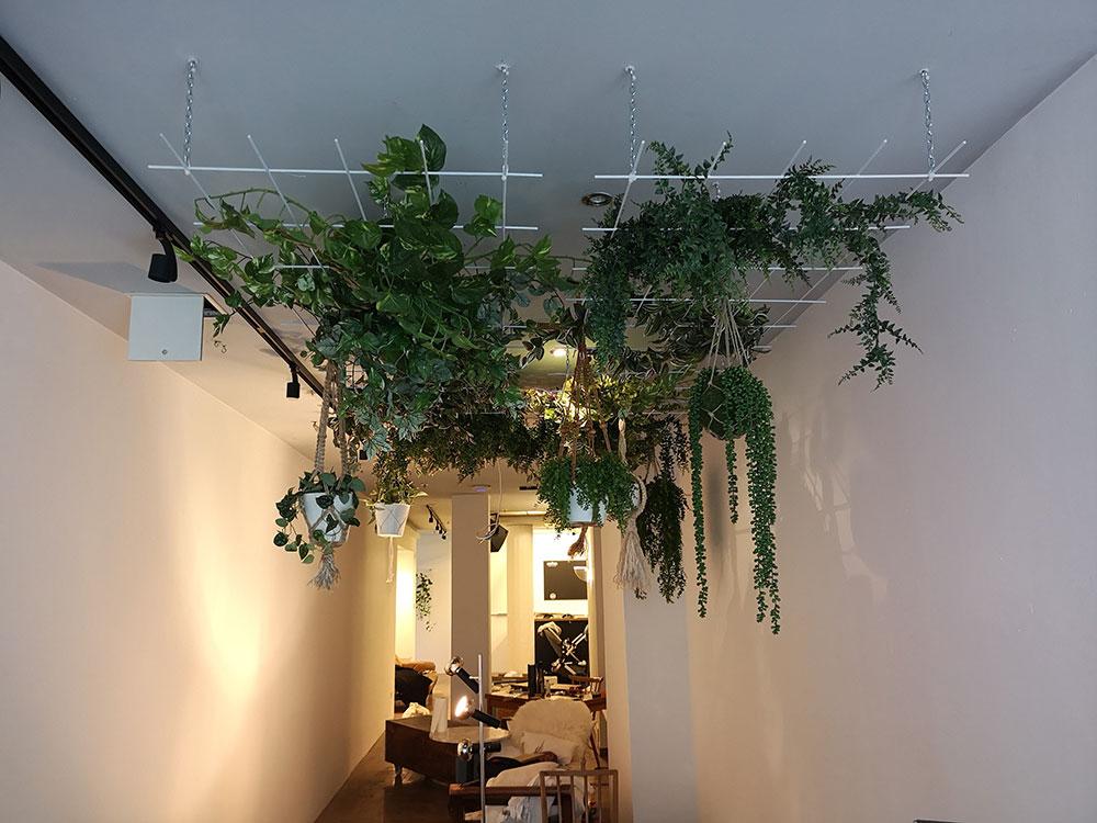 Nachwie vor viel Pfanzen und noch mehr Pflanzen, wie diese neue Pflanzen-Installation im vorderen Bereich.