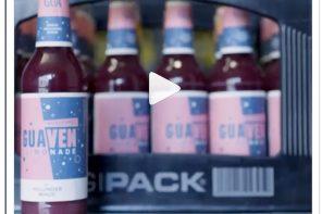 Stuttgarter GUA-Limo startet bei Getränkewettbewerb Drinkstarter
