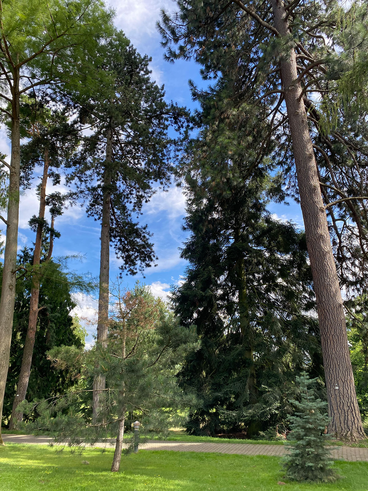 hohenheimer_gärten_29
