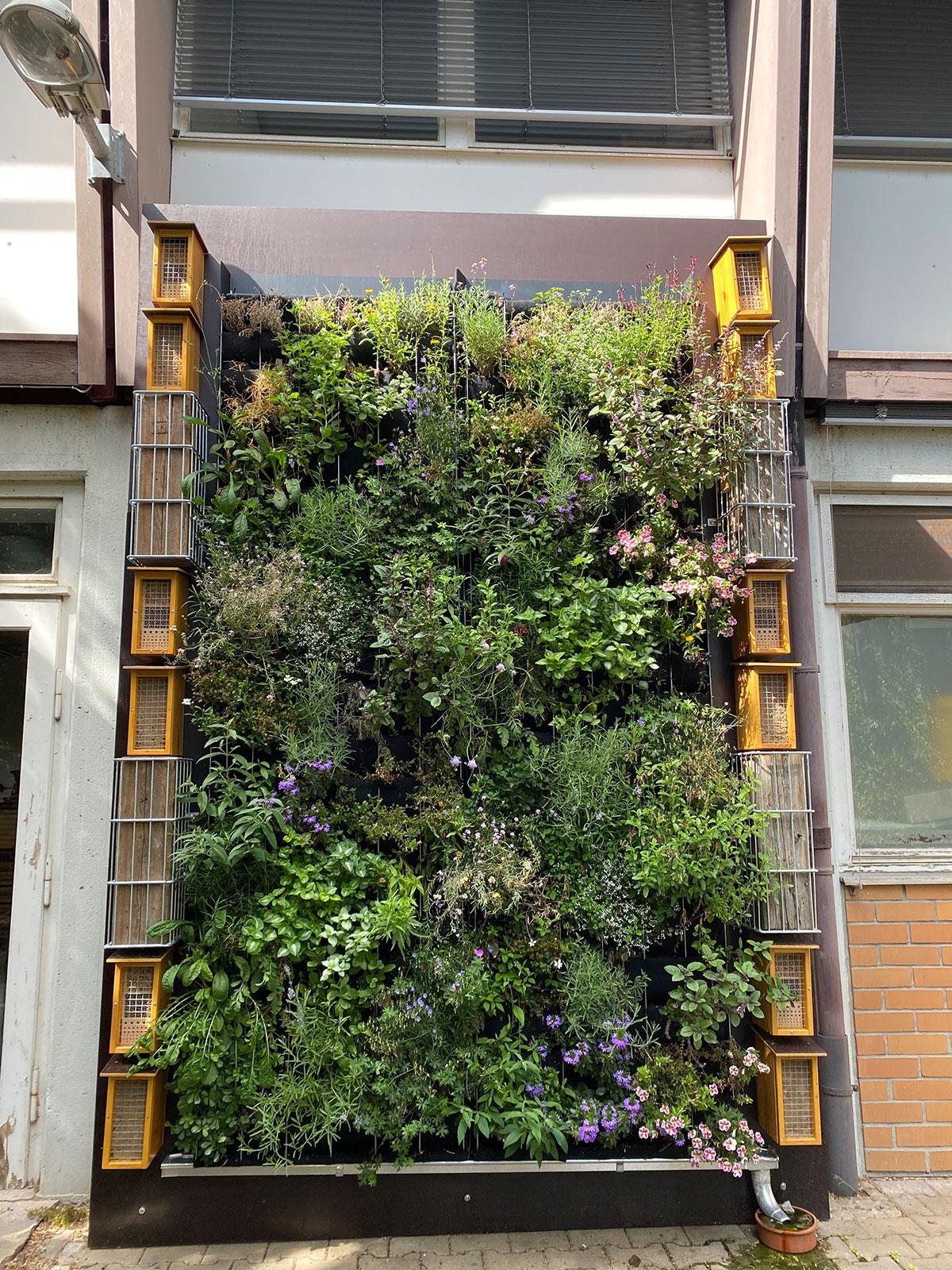 hohenheimer_gärten_bienen